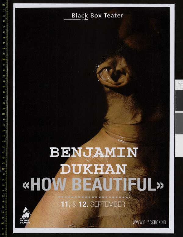 Plakat for Benjamin Dukhans produksjon How Beautiful (2013).