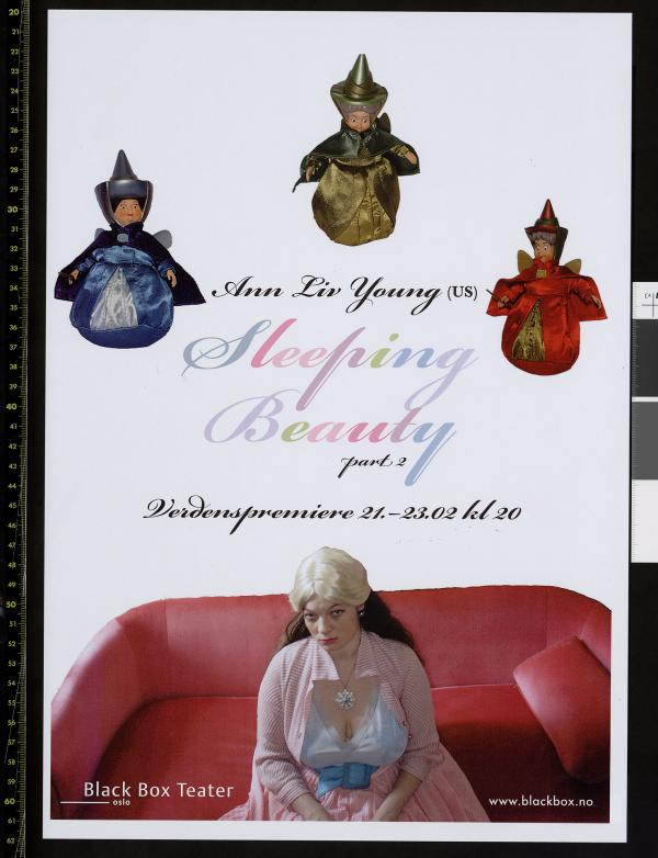Plakat for Ann Liv Youngs produksjon Sleeping Beauty part 2 (2013)